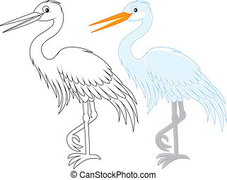 Egret - White egret, color and black and white outline...
