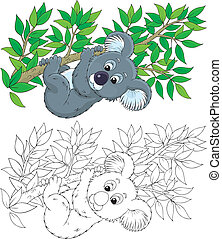 Koala - koala bear hanging on an eucalyptus branch, color...