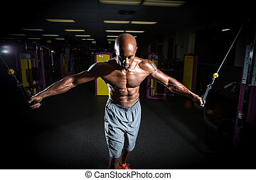 Cable Weight Training Exercises - Muscular body builder...