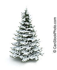 Spruce tree (Christmas tree) covered with snow.Isolated on a...