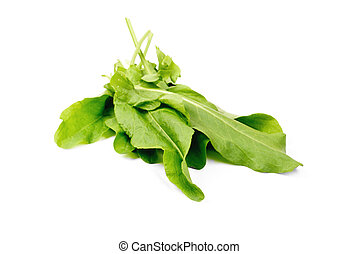 Sorrel   isolation on white  background