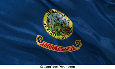 US state flag of Idaho loop - US state flag of Idaho gently...