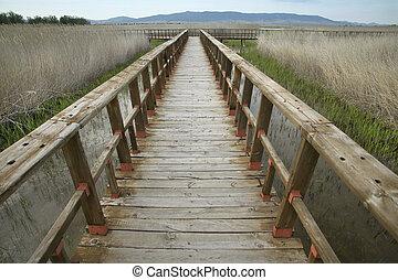 Footbridge walkway. Wetland landscape. Tablas de Daimiel....