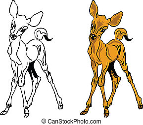 Roe deer,vector illustration