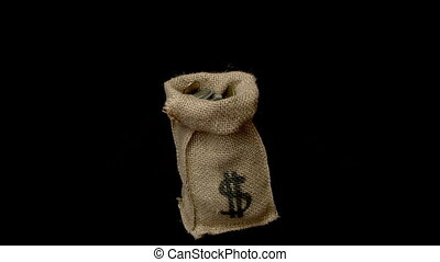 bag of money - cash flow is pleasing to the eye