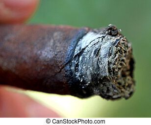 detail of a cigar ash photographed from very close - detail...
