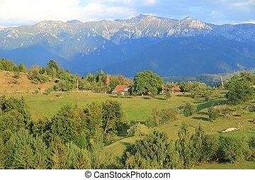 Romania - Piatra Craiului - Piatra Craiului National Park in...