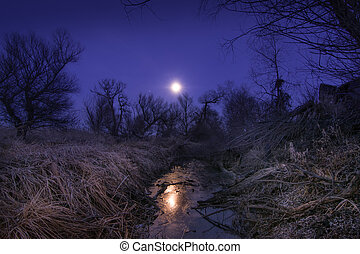 Unusual full moon night with cane and trees silhoettes -...