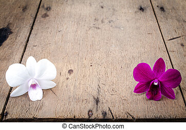 Pink and white orchid (Phalaenopsis ) on a wooden background...