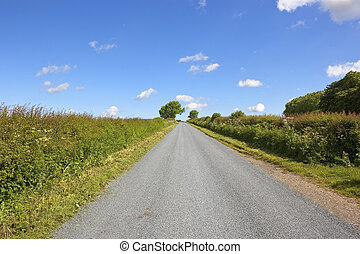 newly surfaced rural road - summer landscape with hedgerows...