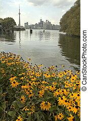 Toronto vertical photo, flowers in foreground, CN tower in...