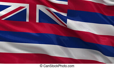 US state flag of Hawaii loop - US state flag of Hawaii...