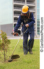 Man worker cutting green grass