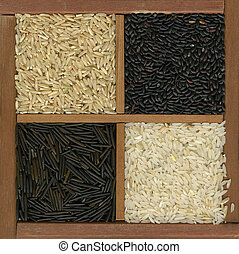 four rice grains background - white, black and brown - four...