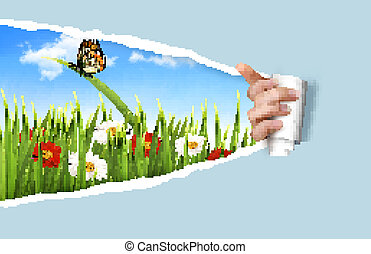 Summer background with flowers, grass and a ladybug. Vector.