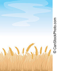 Wheat Fields Background - Background Illustration Featuring...