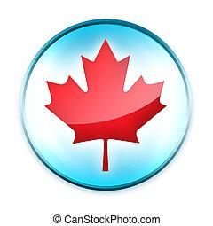 Maple Icon - Canada Icon. 2D artwork.