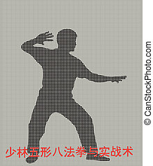 Silhouette of the man of engaged Kung fu on a gray...