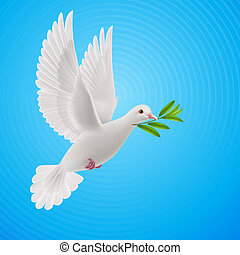 Fly dove - Dove of peace flying with a green twig after...