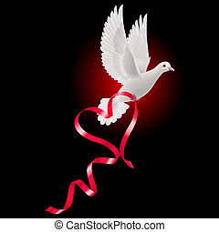 White dove with red ribbon on the black background