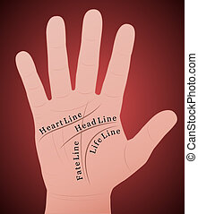 Palmistry Right Hand Main Lines - Palmistry - Right hand...
