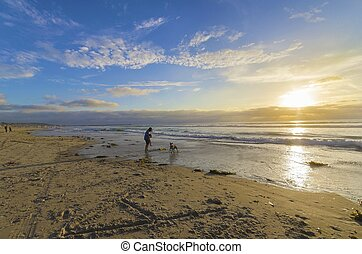 Pacific beach, San Diego, California - The Pacific beach in...