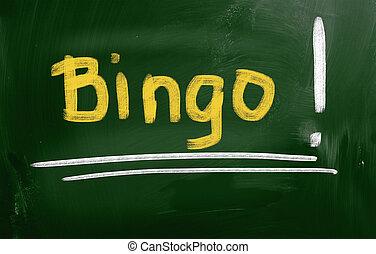Bingo, conceito