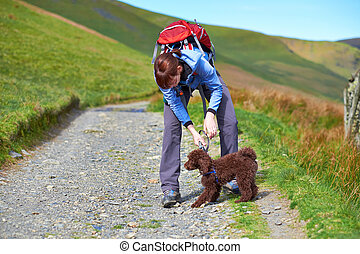 Dog Walking - A female hiker attaching a lead to a dogs...