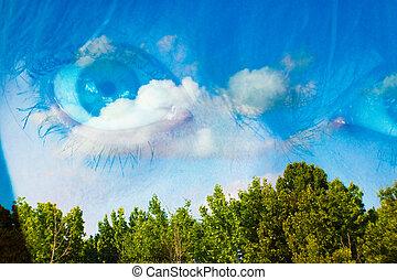 My Eyes in the Sky