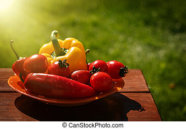 Fresh healthy vegetables on a wooden table.