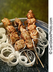 Grilled chicken fillet kebab with onion rings on a silver...