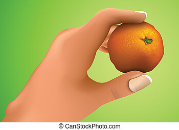 Mandarin in the hand, the hand holding citrus