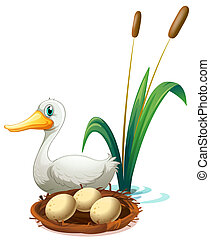 A duck beside the nest - Illustration of a duck beside the...