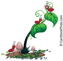 A green plant with ants - Illustration of a green plant with...