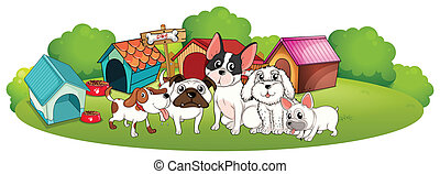 A group of dogs outside their houses