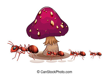 A colony of ants near the mushroom - Illustration of a...
