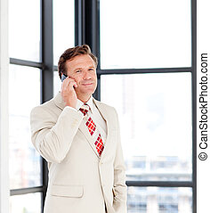 Senior businessman on phone - Senior businessman talking on...