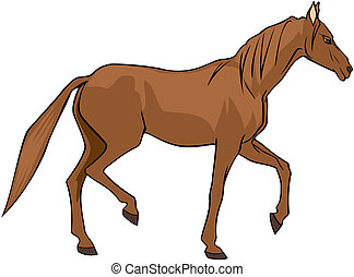 Brown horse - Vector illustration of brown horse isolated on...