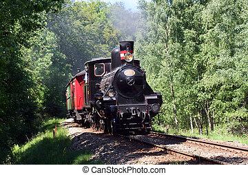 steam train - old steam train coming through the wood