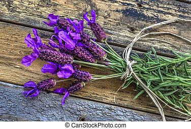 Lavender bundle on wood. - organic lavender flowers on leafy...