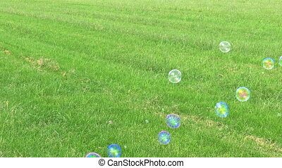 Soap Bubbles Floating on Green Grass Field Background