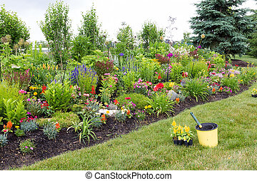 Planting yellow celosia in a colorful garden