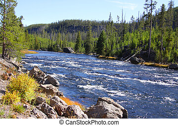 Yellowstone river - Scenic Yellowstone river in Yellowstone...