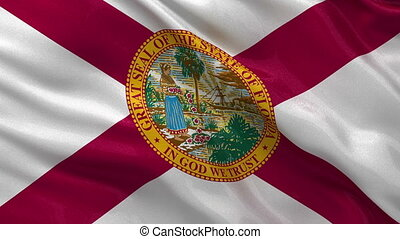 US state flag of Florida loop - US state flag of Florida...