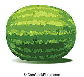 Water Melon - A typical watermelon isolated on a white...