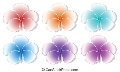 Six flowers - Illustration of the six flowers on a white...