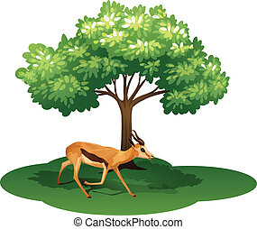 A deer under the tree