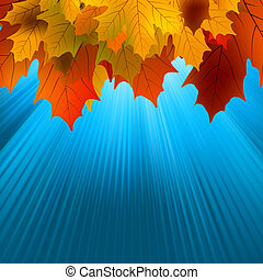 Autumnal leafs of maple and sunlight. EPS 8 vector file...