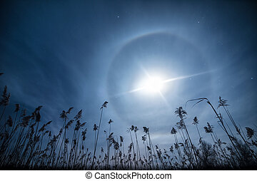 Moon clock -unusual full moon halo light with cane...