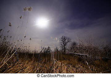 Full moon halo rays - night full moon landscape - Halo ray...